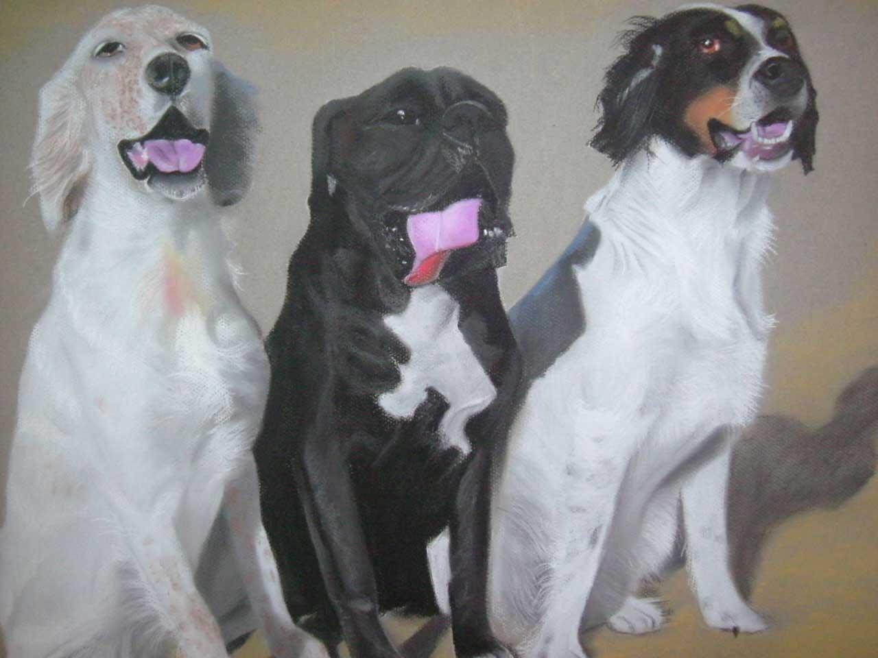 projet tableau sur commande les trois chiens au pastel