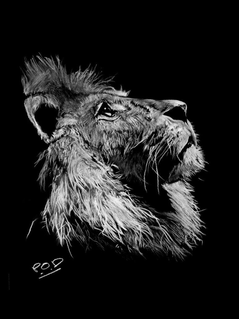 tableaux modernes lion au pastel sec déco design moderne contemporain au pastel sec - modern animal painting - fine art