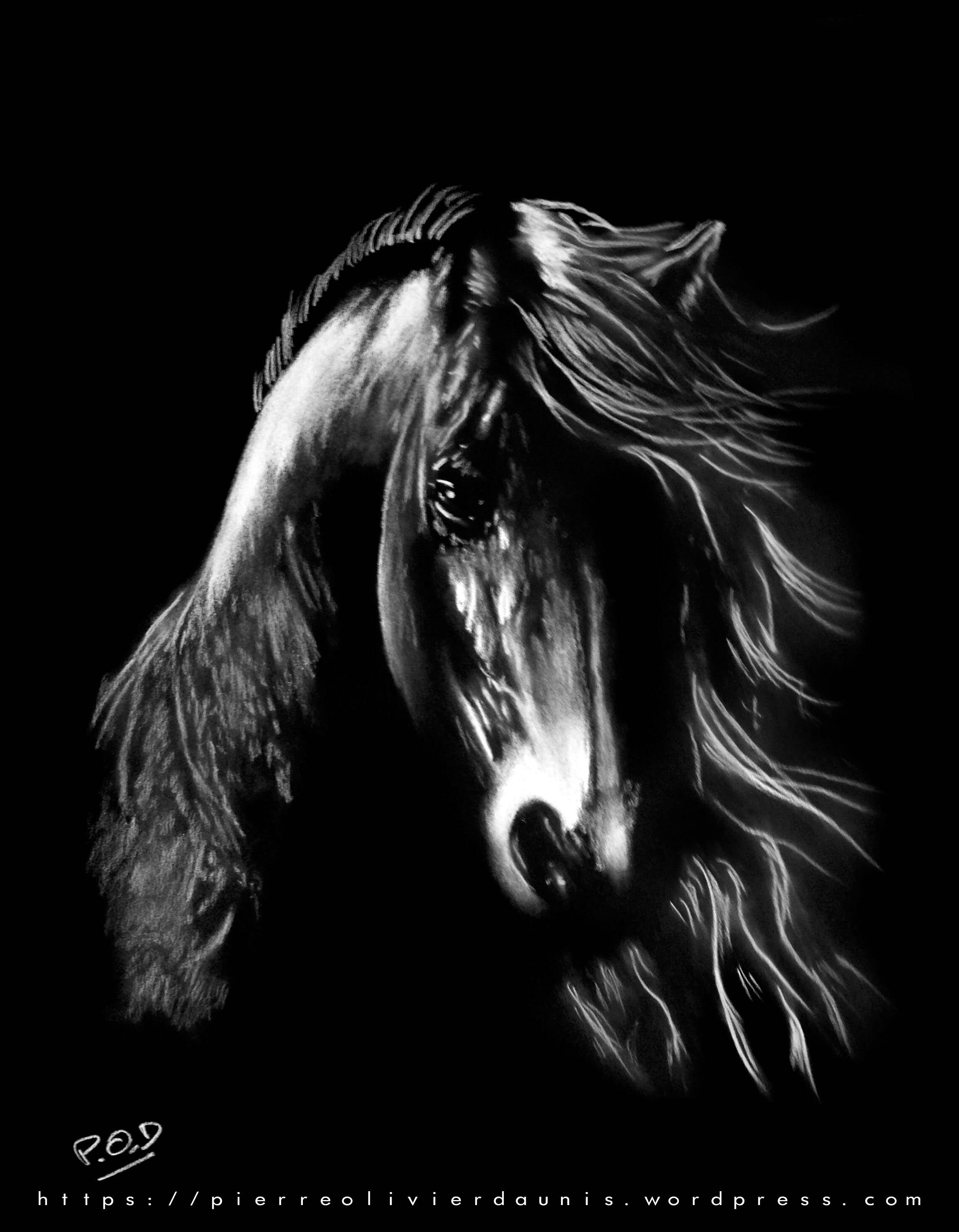 tableau moderne cheval n2 au pastel sec