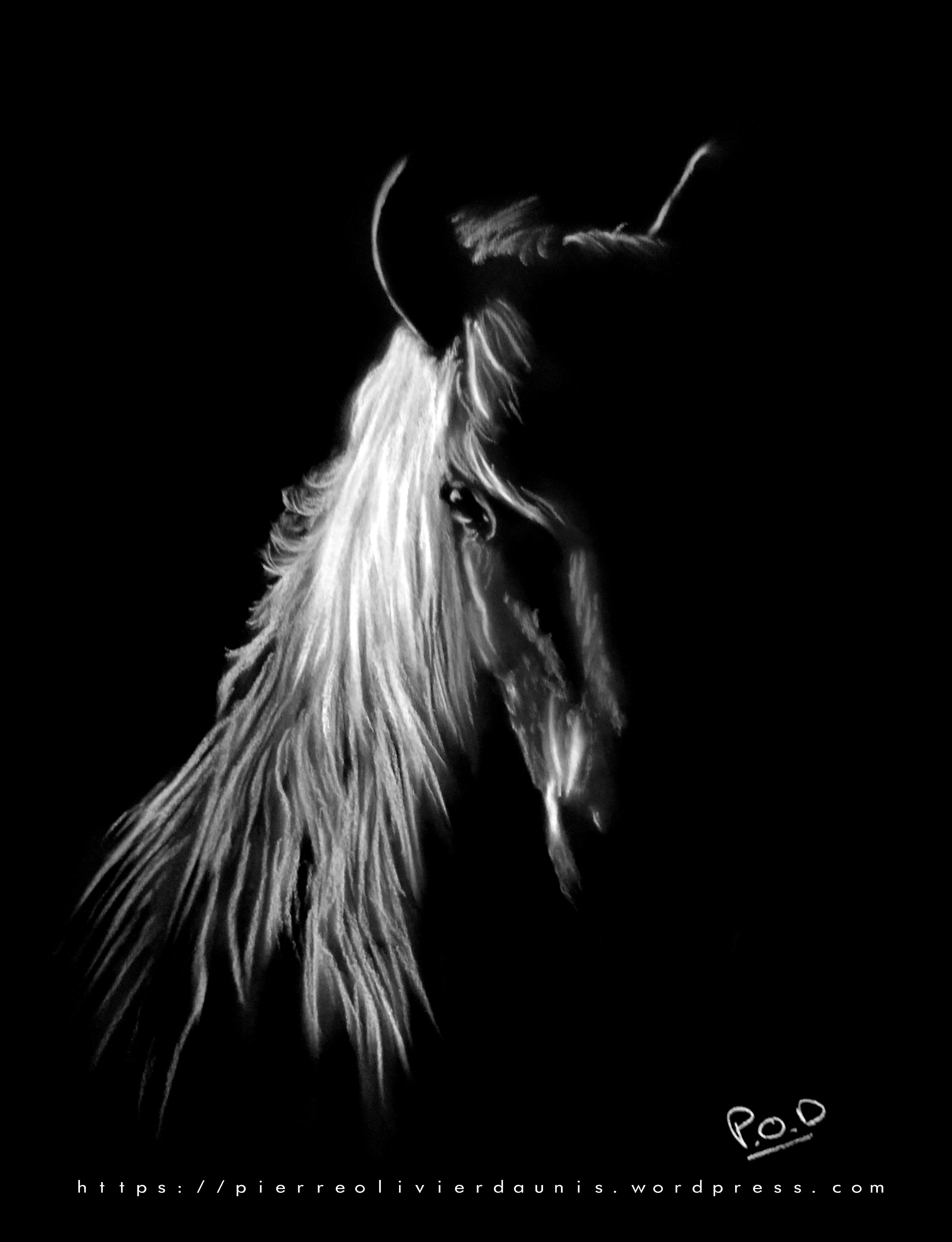 tableau moderne cheval 3 au pastel sec
